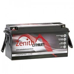 Batteria Litio LiFePO4 24v 100Ah ZLI024060