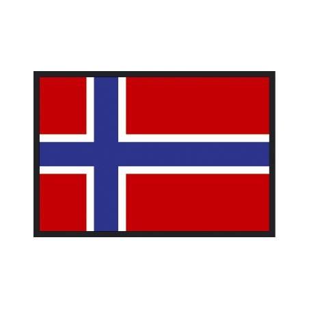 Garanzia di qualità al 100% acquista il più recente vendite speciali Magneti Bandiera norvegese frigorifero bandiere Casa e ...